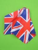 Daisy outfit Britannia