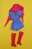 Barbie clone Super Linna clothes outfit 1